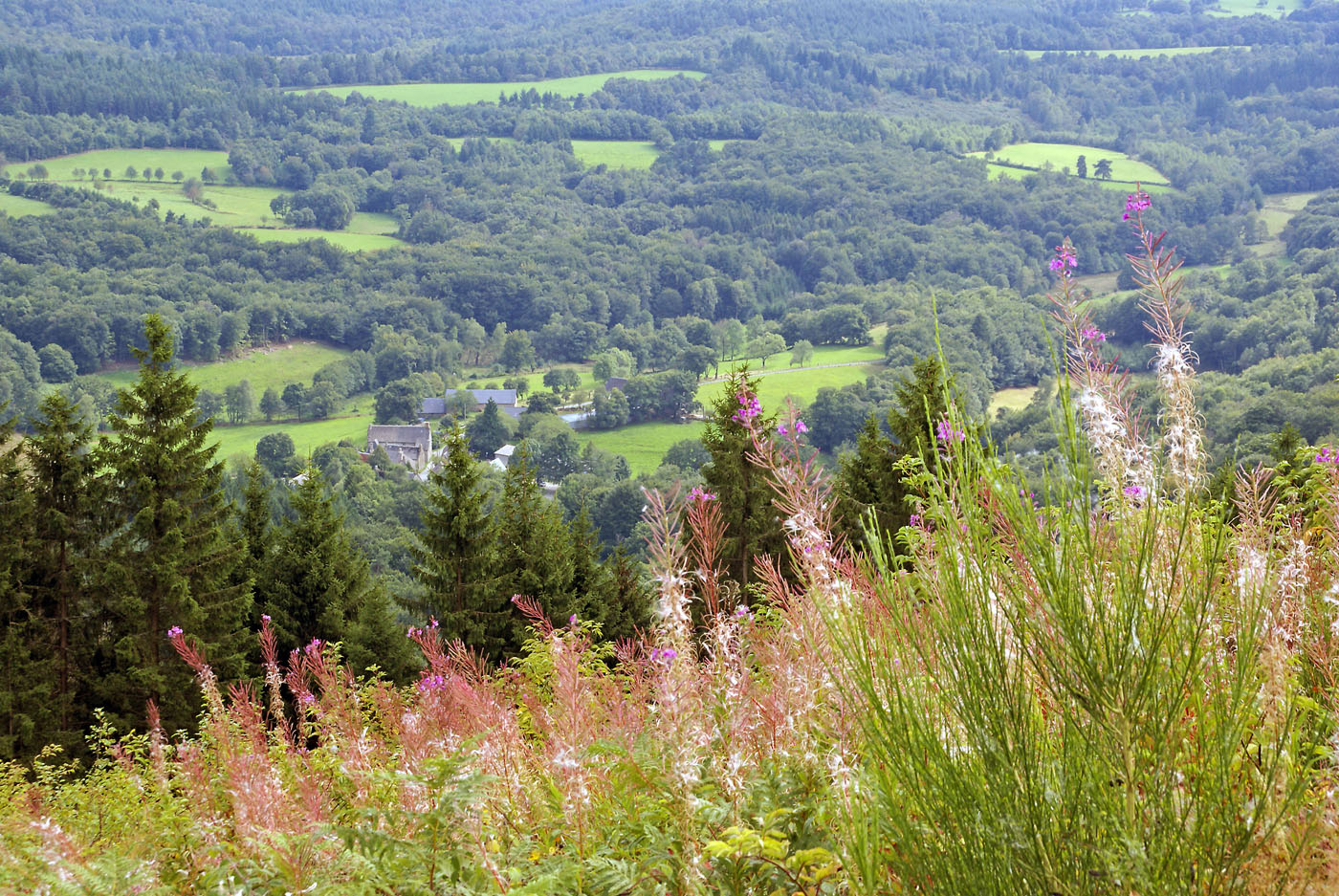 The countryside of southern Limousin from the top of Suc-au-May